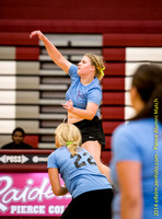 140828_0016_Pierce-volleyball-alumni